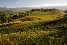 Things To Do In Sonoma: A Day In Glen Ellen & On Sonoma Plaza