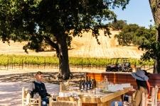 Durell Vineyard Excursion with Three Sticks Wines